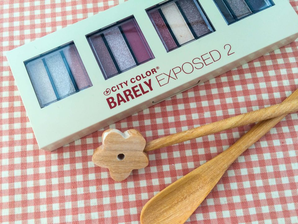 review-barely-exposed-eye-shadow-palette-23