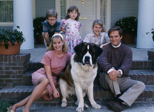 11ภาพยนตร์เกี่ยวกับสุนัข