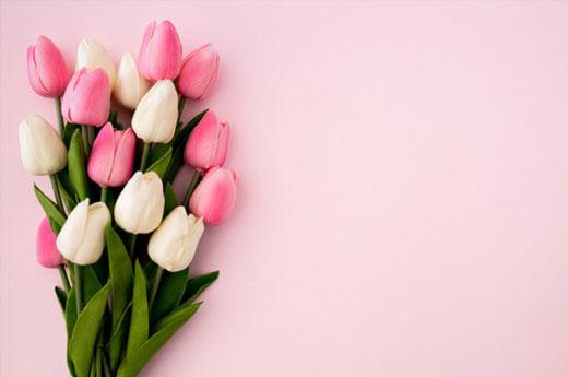 ความหมายของ-ดอกไม้